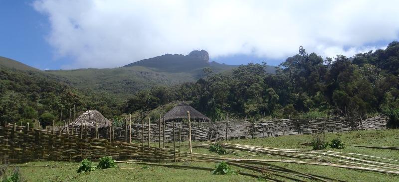 Bale Mountains National Park, Ethiopia