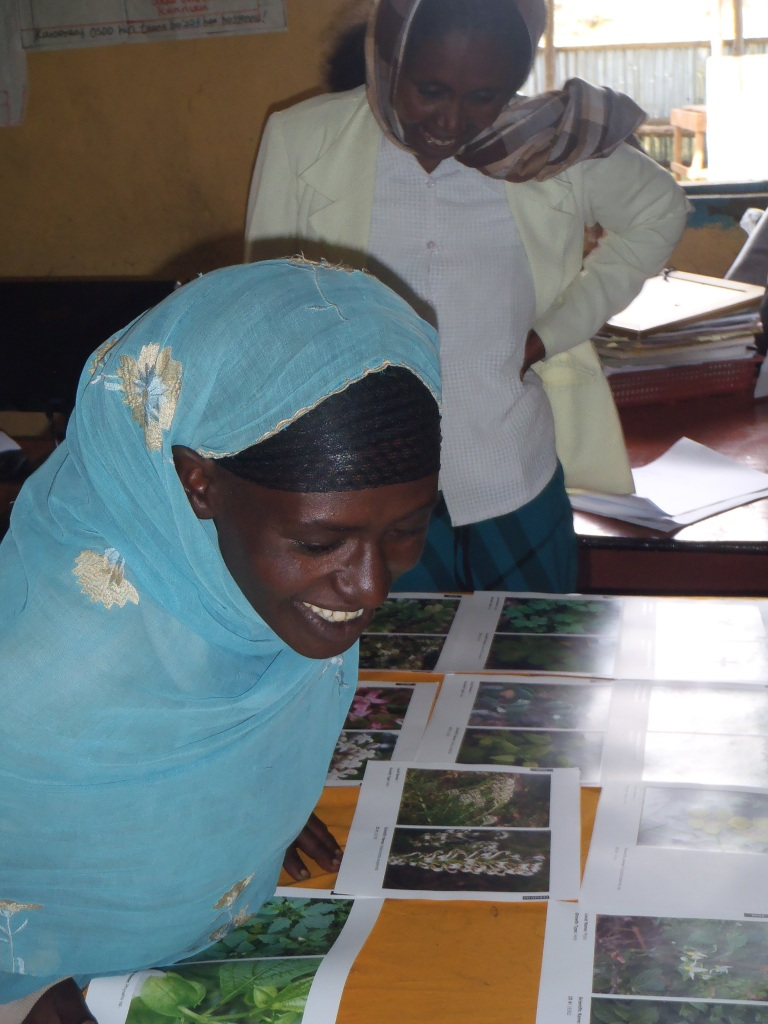 Local women identifying plants and their uses
