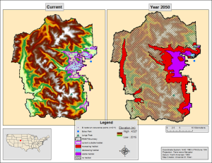 Figure 2. Current and year 2050 bioclimatic niche of B. tectorum (cheatgrass) in Rocky Mountain National Park, CO. Maps created by A. West (West et al., In Review).