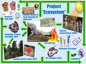 "Figure 5. Conceptual diagram of the Project ""Ecosystem""."
