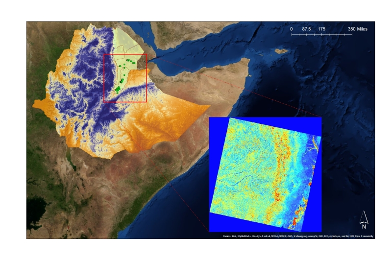 Thirty-meter digital elevation model of Ethiopia with invasive mesquite occurrence (green points) across study region, and enlargement of individual Landsat 8 model predictor (NDVI).