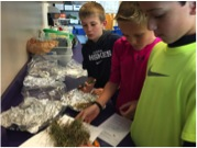 Students weigh biomass