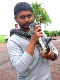 Vyas_Dhaval