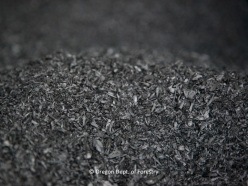 biochar-for-ecopress